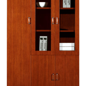 book display cabinet;document cabinet