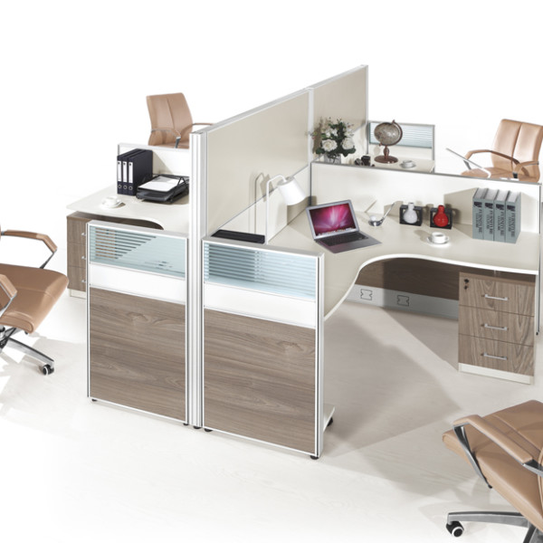 4 Person Workstation Partition