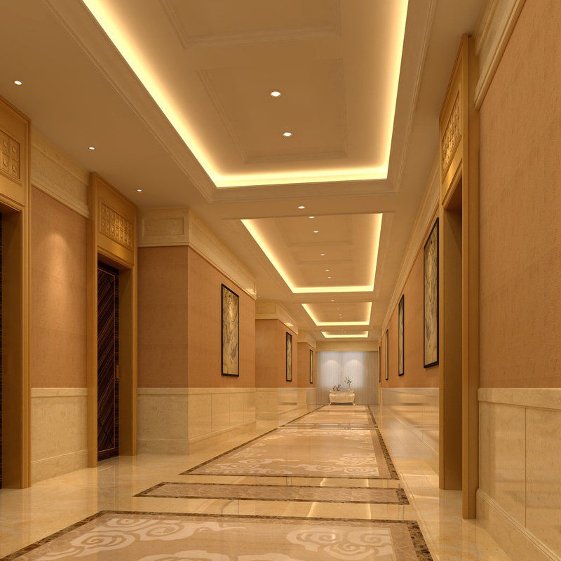 Corridor Walls For Modern 5 Star Hampton Inn Hospitality